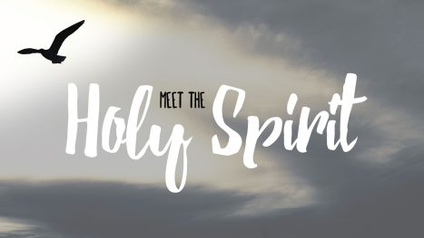 Meet the Holy Spirit
